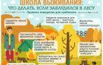 Заблудились в лесу – план действий
