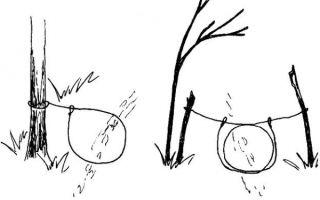 Как сделать петлю на зайца