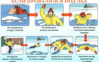 Что делать, если провалился под лед: инструкция по выживанию