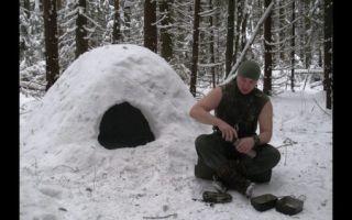 Как выжить в лесу без всего зимой: рекомендации по выживанию