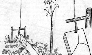 Силки на птиц — как сделать ловушку своими руками