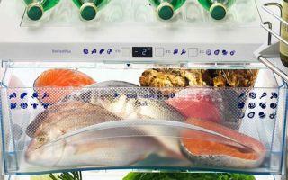 Как сохранить рыбу в жару без холодильника: лучшие способы
