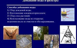 Способы очистки воды в природных условиях