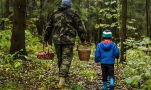 Одежда для похода в лес, классификация и критерии выбора