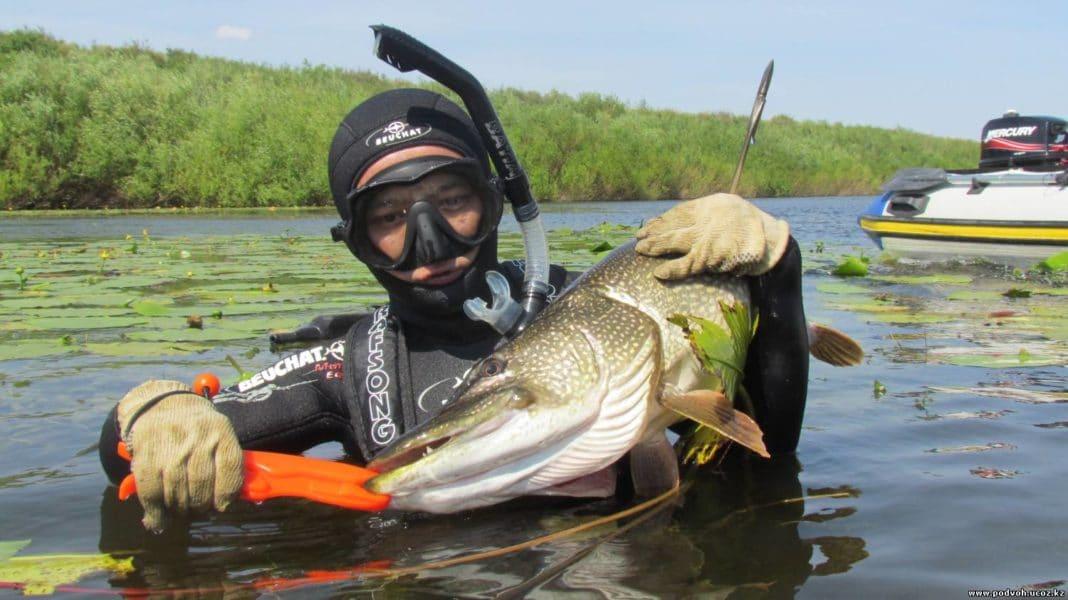 Рыбалка в астраханскую область